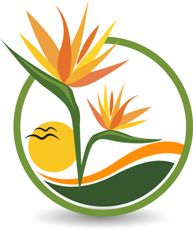 Illustration art of a birds of paradise flower icon with isolated background