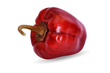 hot red dry round chili pepper with isolated background Zdjęcie Seryjne