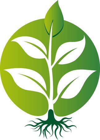 Illustration art of a green plant icon with isolated background Illusztráció