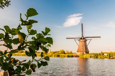 historians: Gli storici mulini a vento olandesi vicini a Rotterdam