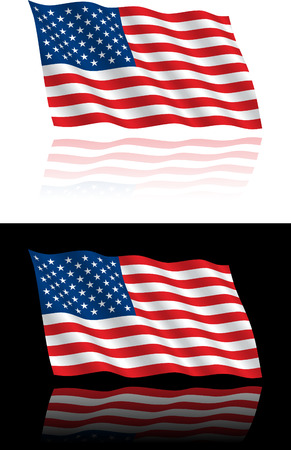 American Flag Flowing Vector