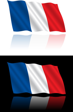 flag: French Flag Flowing