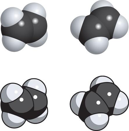 ethylene: A space fill model of ethylene. Illustration