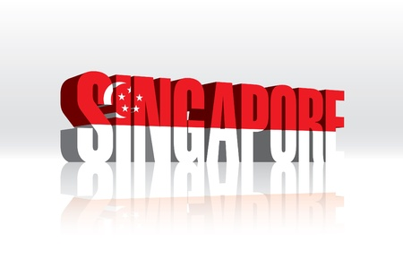 3D Vector Singapore Word Text Flag