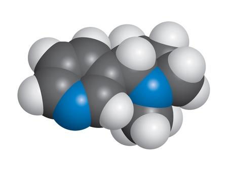 Nicotine molecule space fill model - C10H14N2 Illustration