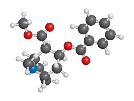 alkaloid: Cocaine molecule ball and stick model - C8H10N4O2 Illustration