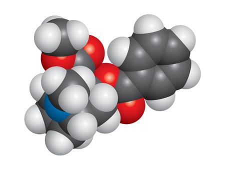 Cocaine molecule space-fill model - C8H10N4O2 Illustration