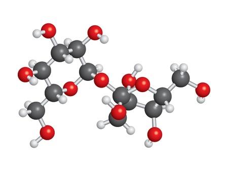 Sucrose (sugar) molecule ball and stick model - C12H22O11