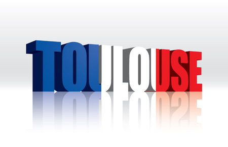 toulouse: 3D Vector Toulouse  France  Word Text Flag