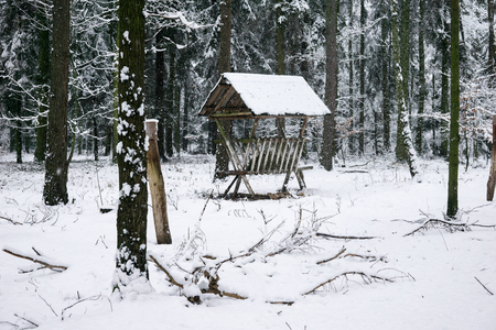 feeder for animals in winter in a forest