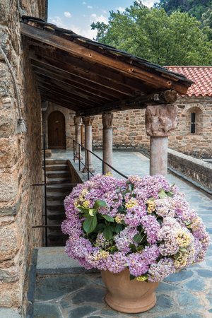 Pot of Hydrangeas in the Romanesque Abbey of Saint Martin du Canigou in the French Pyrenees Stock Photo