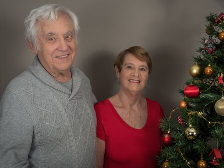 Horizontal portrait of a happy and smiling elderly couple by a Christmas tree