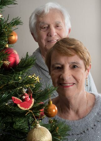 Horizontal portrait of an elderly couple by a Christmas tree