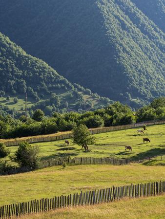 mestia: Svaneti region in Georgia, Caucasus, close to Mestia