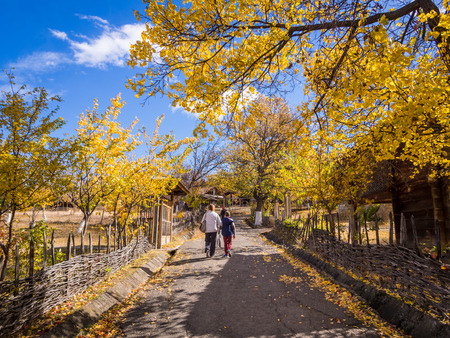 ethnographical: People walking in the park in the Ethnographical Museum in Tbilisi, Georgia  Many of the city s cultural events are held in the park  Editorial
