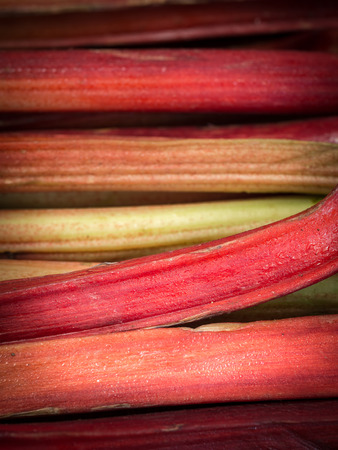 rheum: Fresh rhubarb sold on a organic vegetable market.