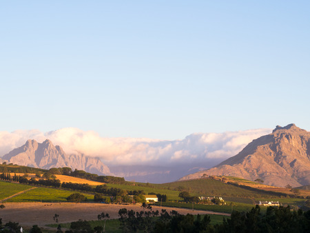 Landscape in Stellenbosch, Western Cape, South Africa, at sunset.