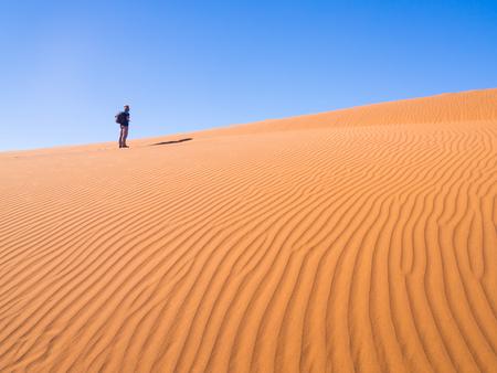 treck: Single man walking on the Namib Desert, Namibia.