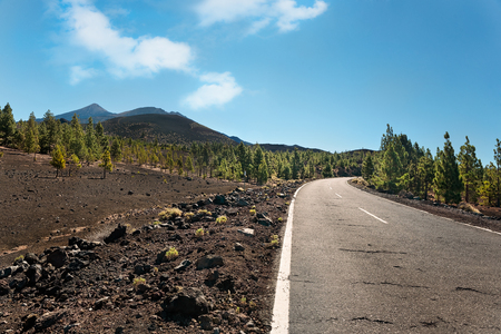 Empty road in Teide National Park, Tenerife, Canary islands, Spain
