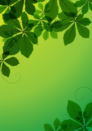 Abstract background with chestnut leaves Vector