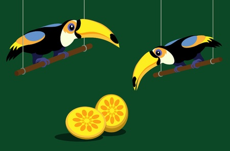 tucan: Two cartoon toucans on green background Illustration