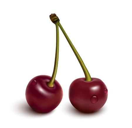 Cherries with water drops Vector