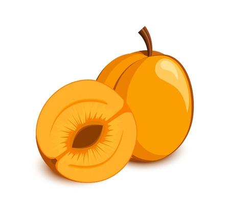 Apricot icoon. Groenten en fruit collectie