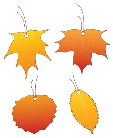 aspen: Set of leaf price tags Illustration