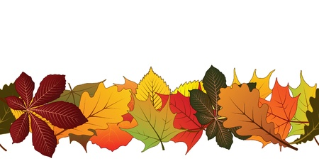 aspen tree: Autumn leaves, horizontal seamless pattern