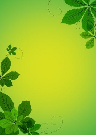 Abstracte achtergrond met groene kastanje bladeren. Ruimte voor uw tekst