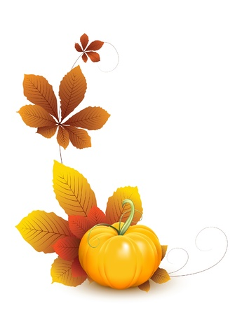fall background: Pumpkin with autumn leaves isolated on white. Fruit and vegetable collection Illustration