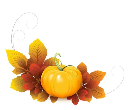 gourds: Pumpkin and autumn leaves, elements for your design. Fruit and vegetable collection