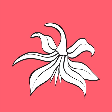 Stylized flower, hand drawn element for design Vector