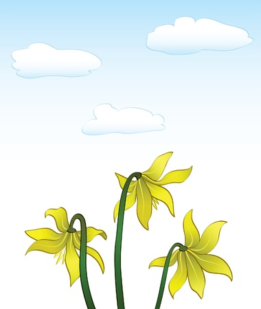 Summer background with yellow flowers Vector