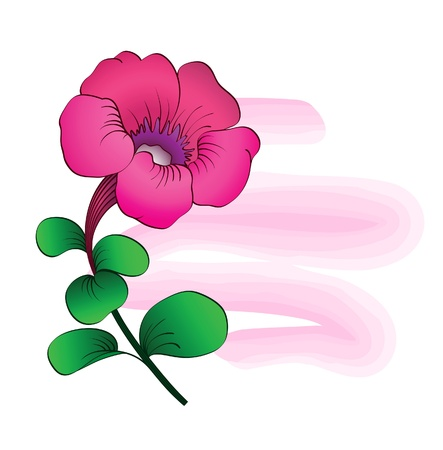 petunia: Pink petunia, floral summer backgound Illustration