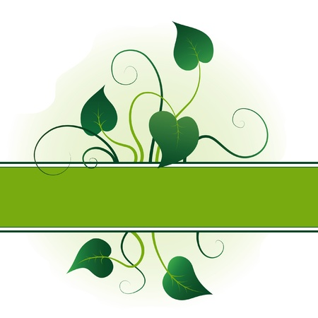 Green leaves with flourishes, summer background Vector
