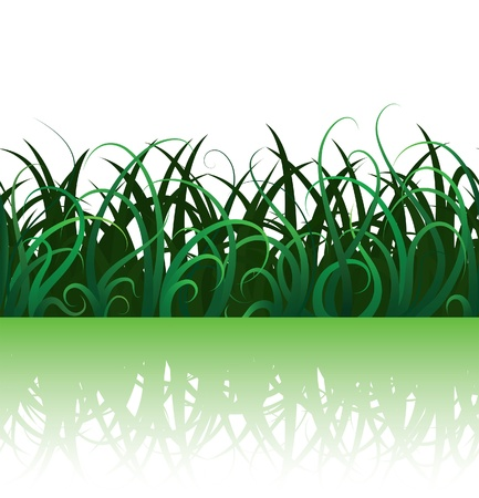 Summer background with green grass, seamless illustration Vector