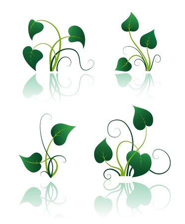 Green leaves with flourishes, set of summer icon