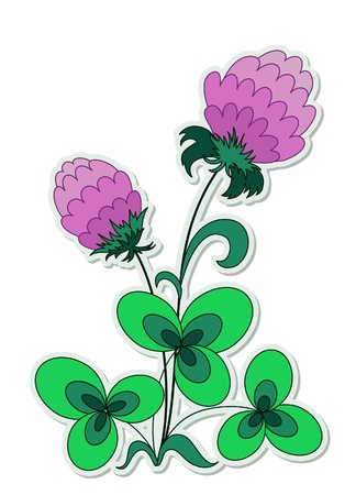 Clover flower sticker isolated on white Vector