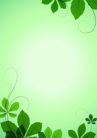 Summer background with green chestnut leaves Vector