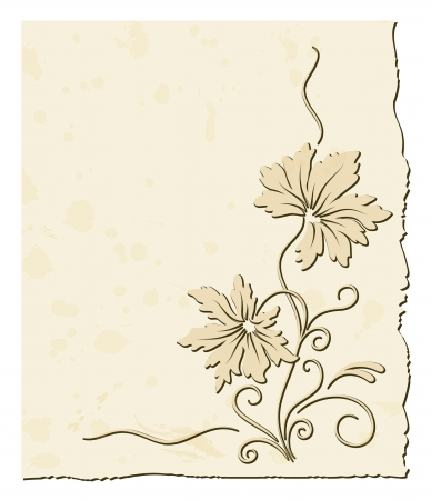 page decoration: Old paper with decorative floral ornament