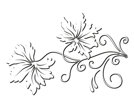 monochromatic: Decorative floral element on white background Illustration