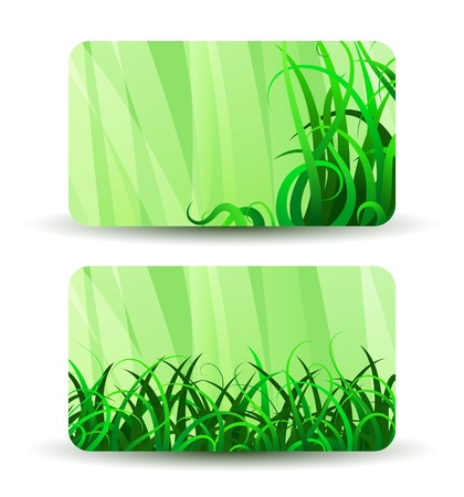 Green grass, business cards on white Vector