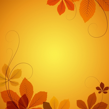 sycamore leaf: Autumn background with yellow chestnut leaves