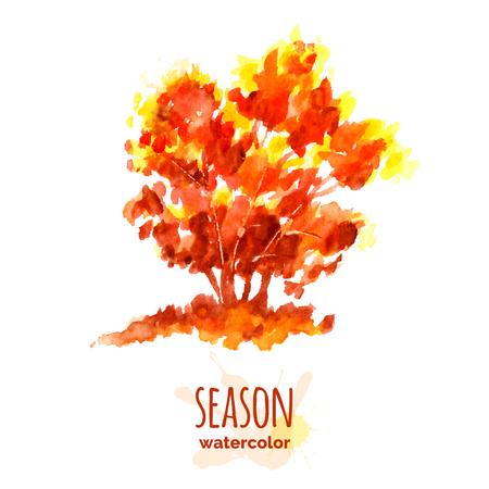 autumn tree: Hand painted watercolor autumn tree, seasonal illustration