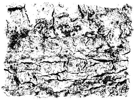 crannied: Black and white background, abstract grunge texture