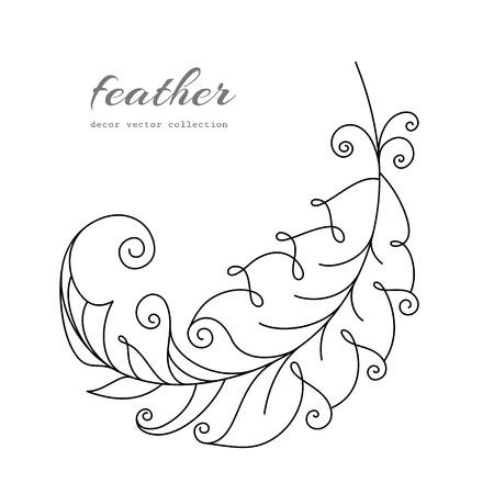 white feather: Volar la pluma, elemento swirly contorno dibujado mano en blanco Vectores