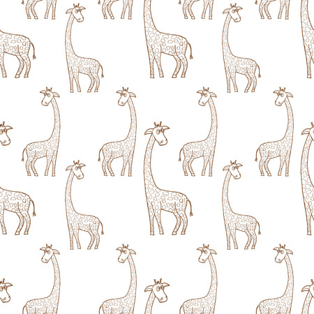 camelopardalis: Beautiful adult Giraffe looking at us, illustration on white Illustration
