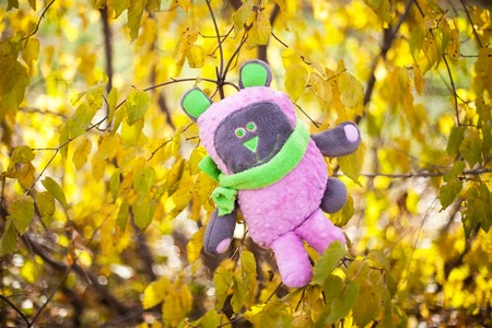 pink teddy bear: Pink teddy bear with green eyes and ears in the forest