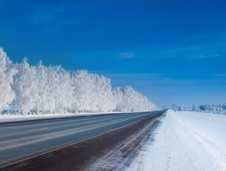 countryside landscape: beautiful winter forest. A Panorama of frosty day in the winter forest